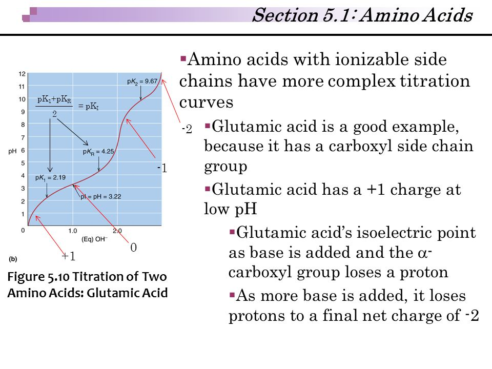 Section 5.1: Amino Acids Amino acids with ionizable side chains have more complex titration curves.