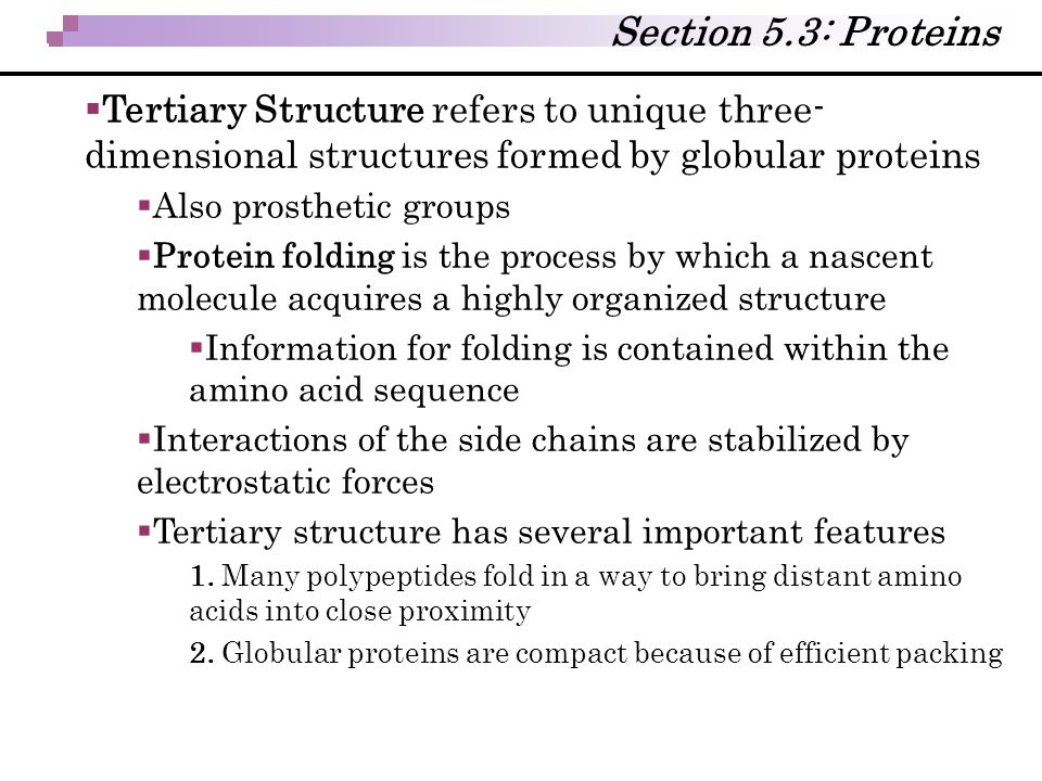 Section 5.3: Proteins Tertiary Structure refers to unique three-dimensional structures formed by globular proteins.