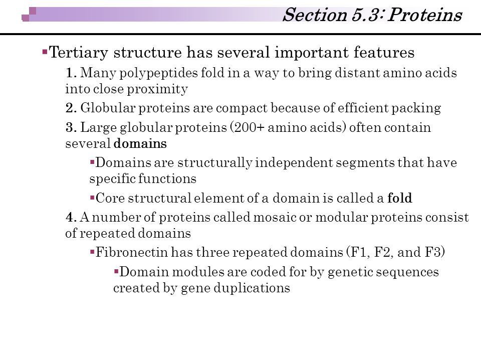 Section 5.3: Proteins Tertiary structure has several important features.