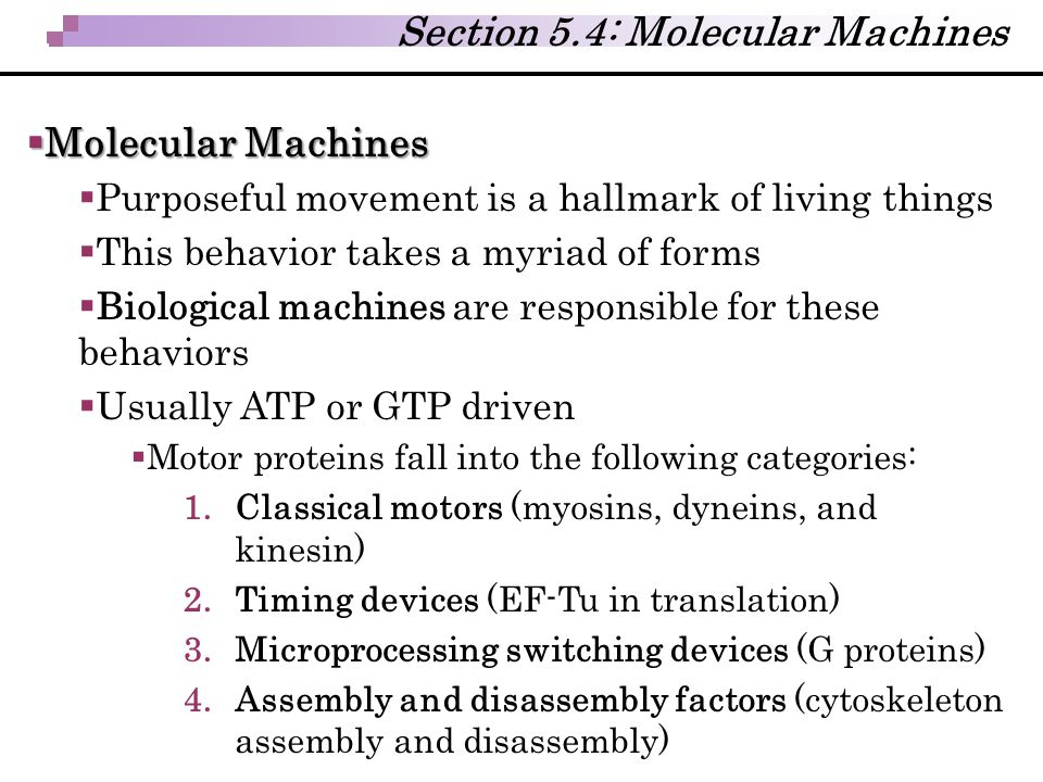 Section 5.4: Molecular Machines