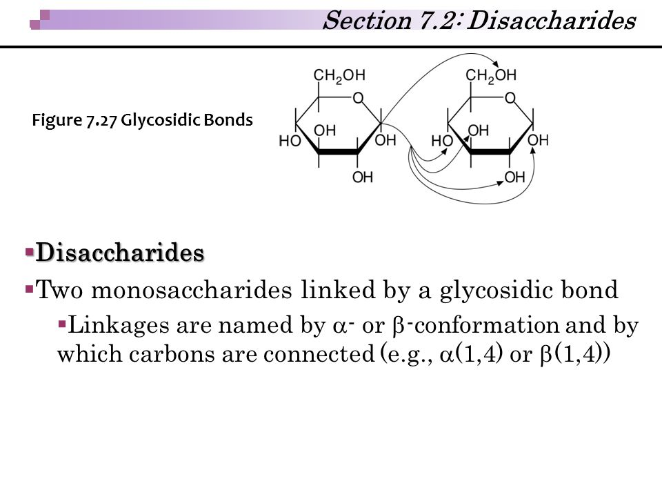 Section 7.2: Disaccharides