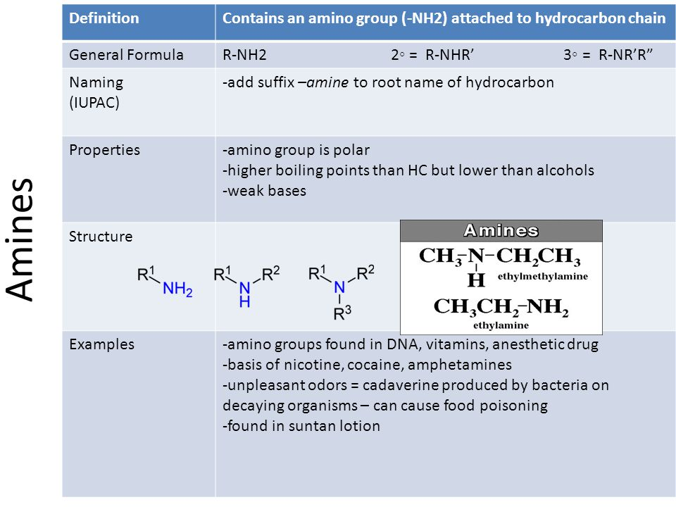 Definition Contains an amino group (-NH2) attached to hydrocarbon chain. General Formula.