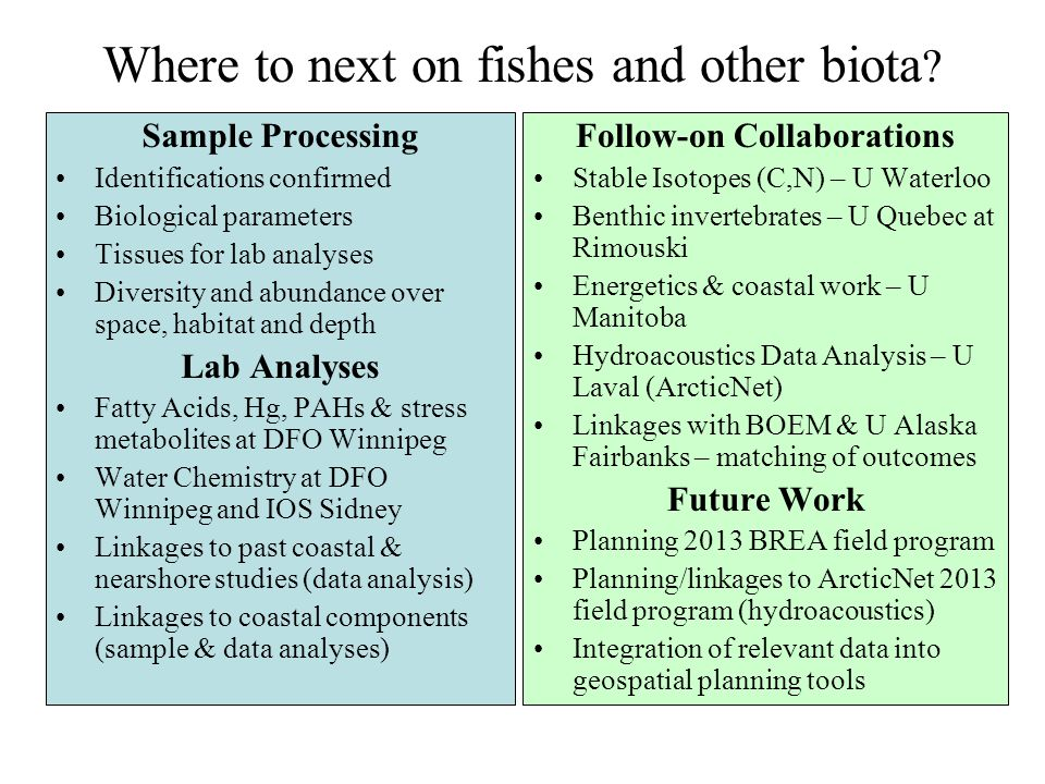 Where to next on fishes and other biota