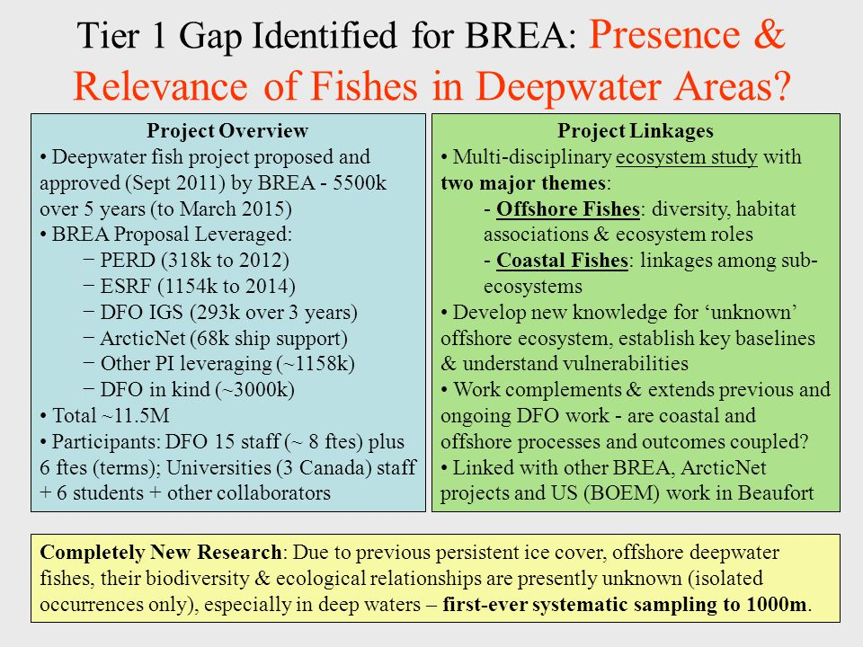 Tier 1 Gap Identified for BREA: Presence & Relevance of Fishes in Deepwater Areas