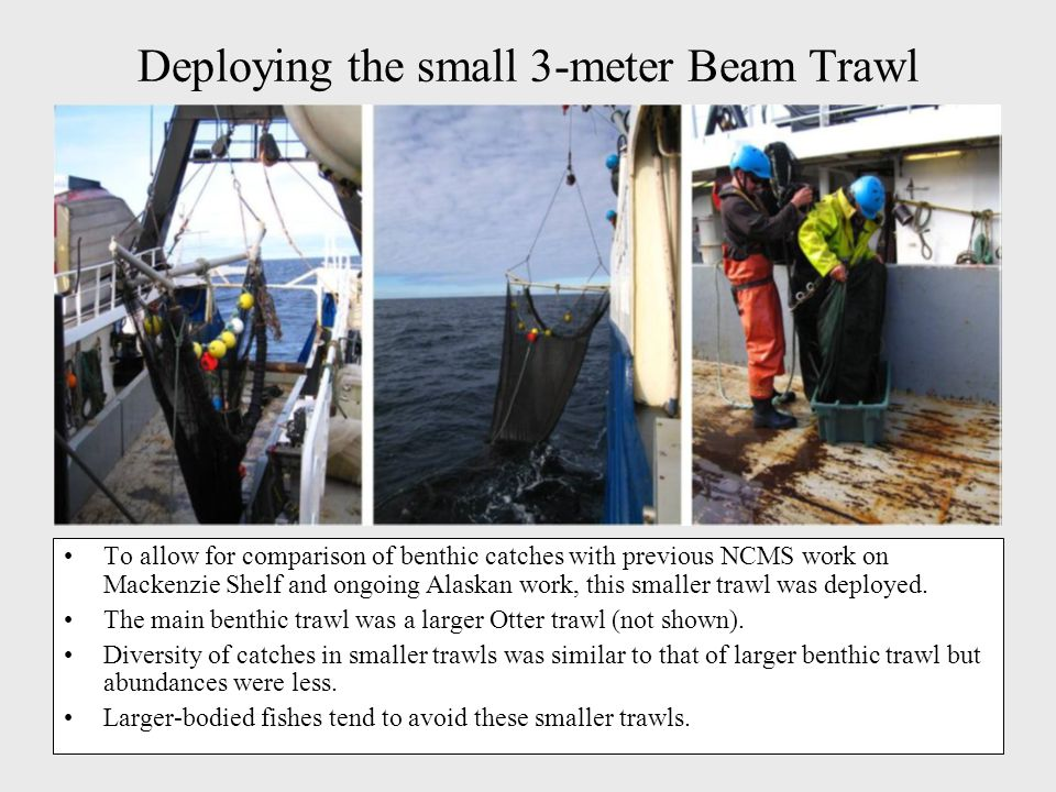 Deploying the small 3-meter Beam Trawl