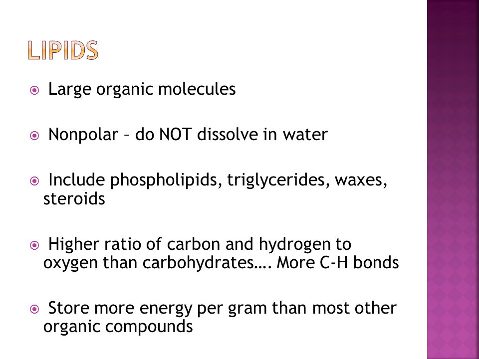 Lipids Large organic molecules Nonpolar – do NOT dissolve in water