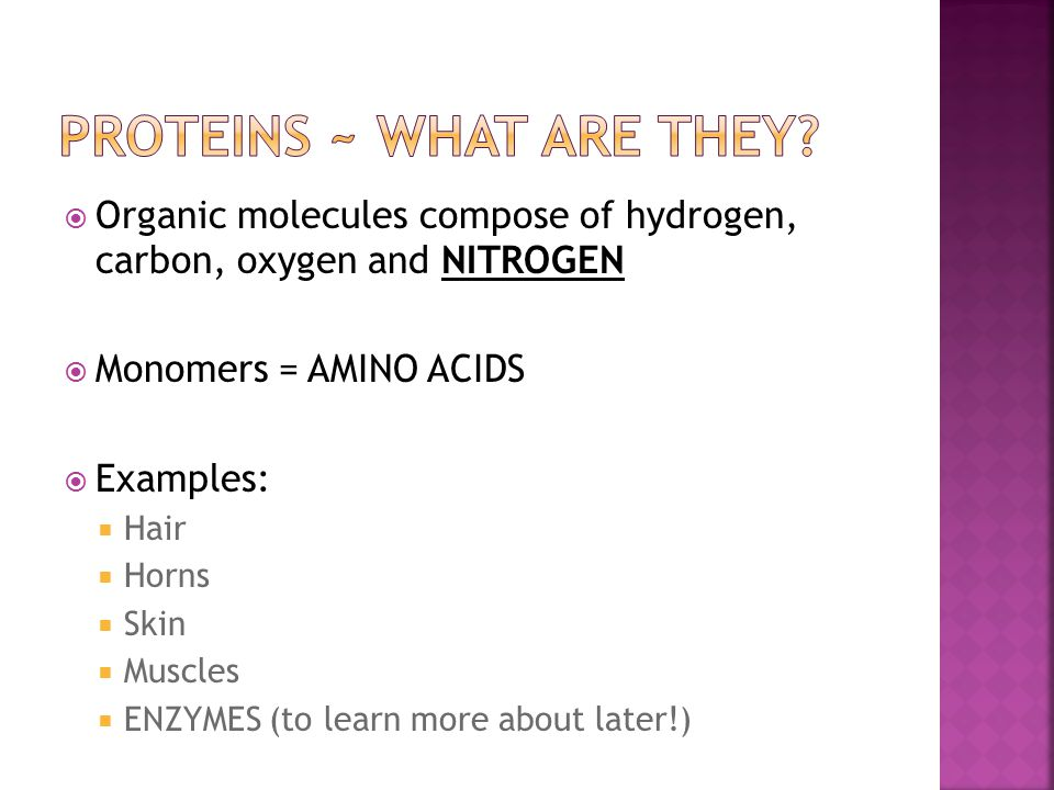 Proteins ~ What are they