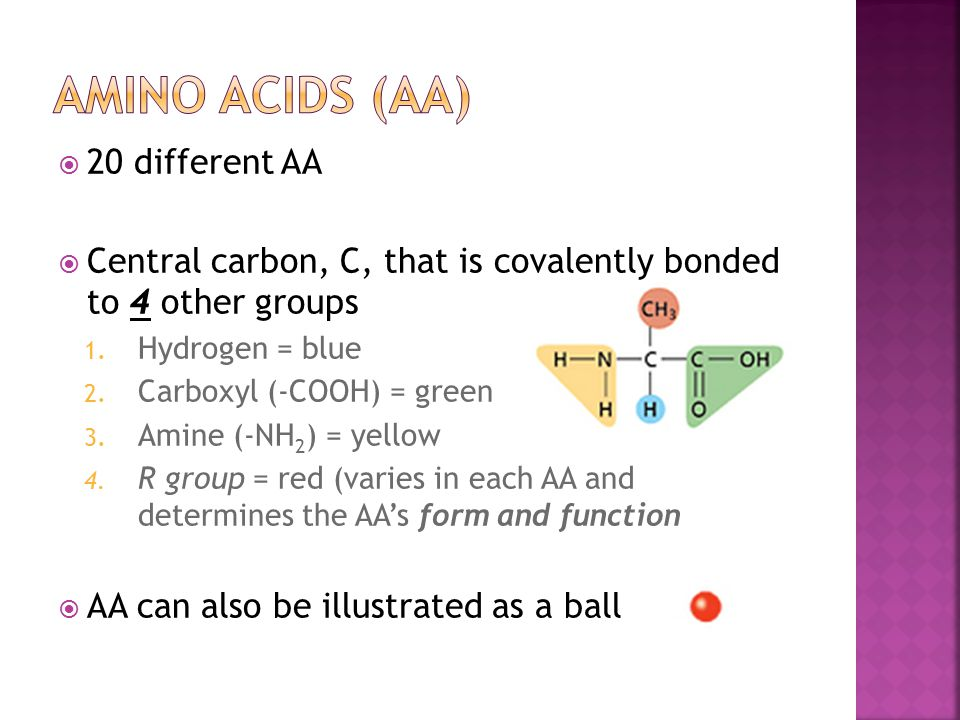 Amino Acids (AA) 20 different AA