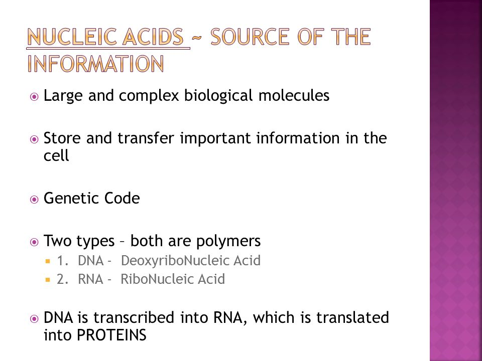 NUCLEIC ACIDS ~ source of the information