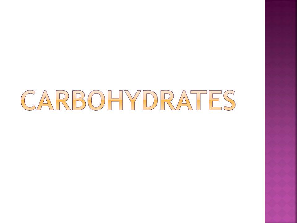 Bio 1 Carbohydrates