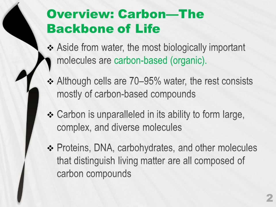 Overview: Carbon—The Backbone of Life