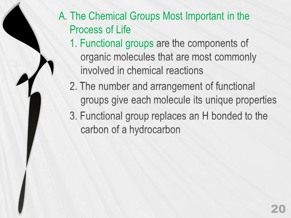 A. The Chemical Groups Most Important in the Process of Life 1