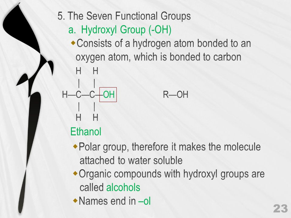 Polar group, therefore it makes the molecule attached to water soluble