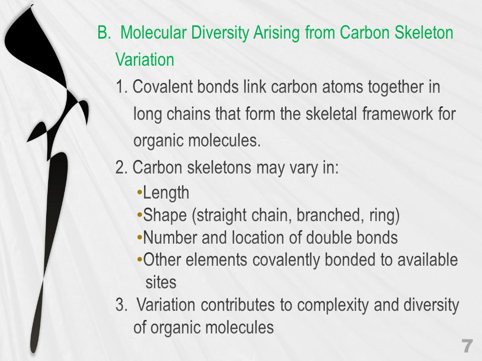 B. Molecular Diversity Arising from Carbon Skeleton Variation