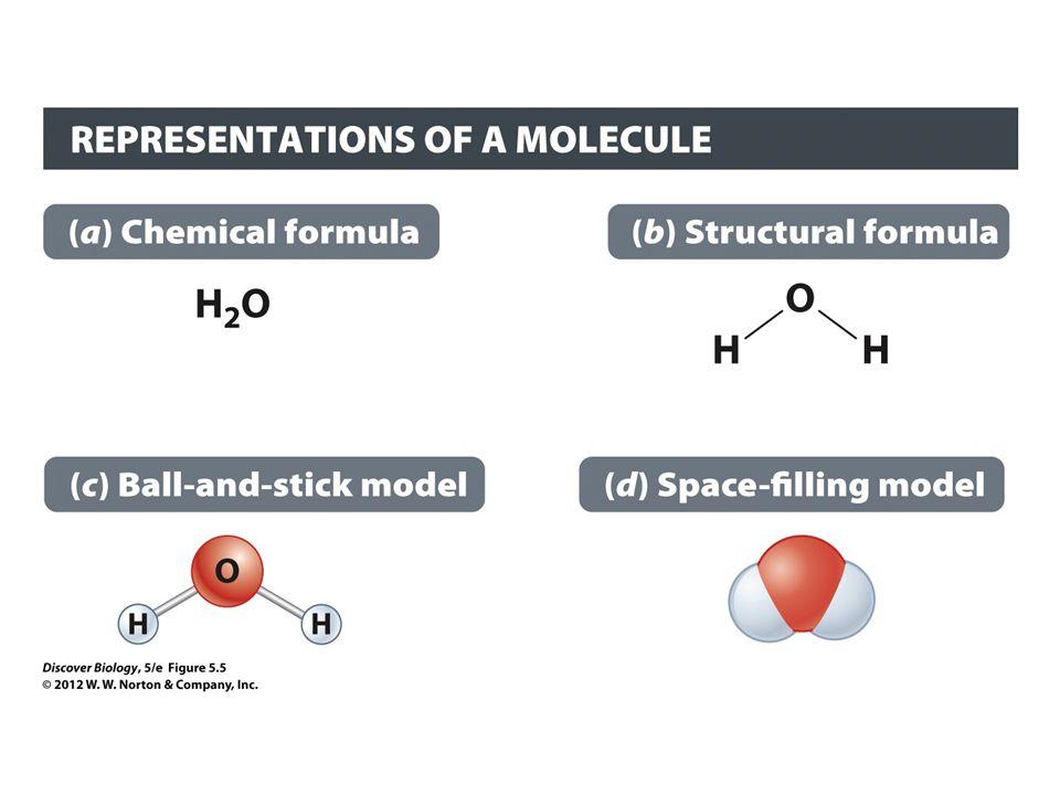 Figure 5.5 Covalent Bonds between Atoms Can Be Represented in Various Ways