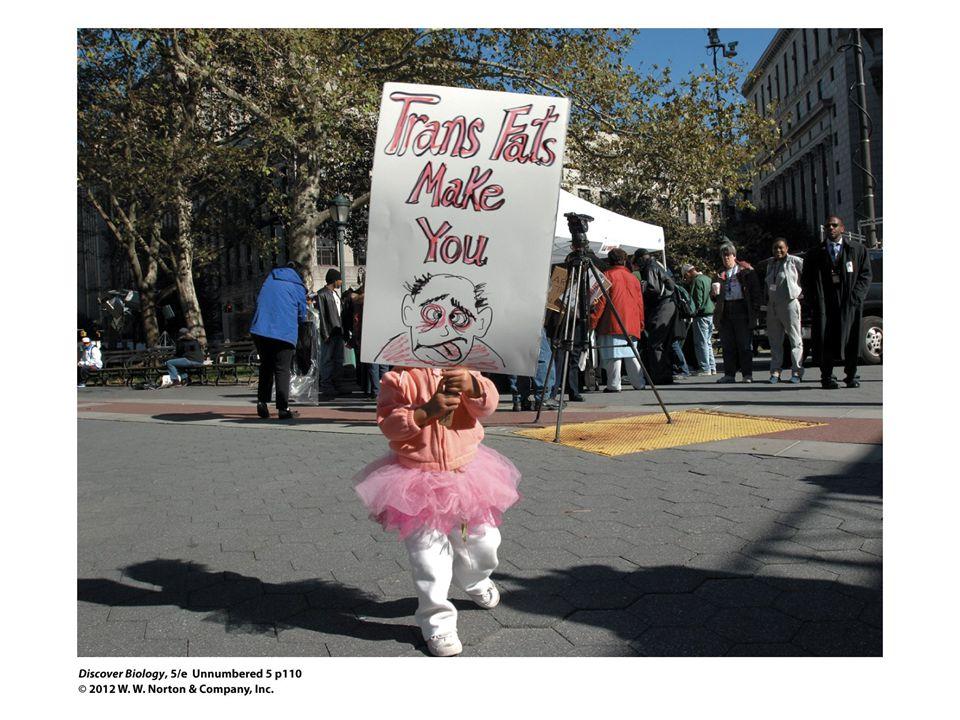 An Anti–Trans Fat Rally.