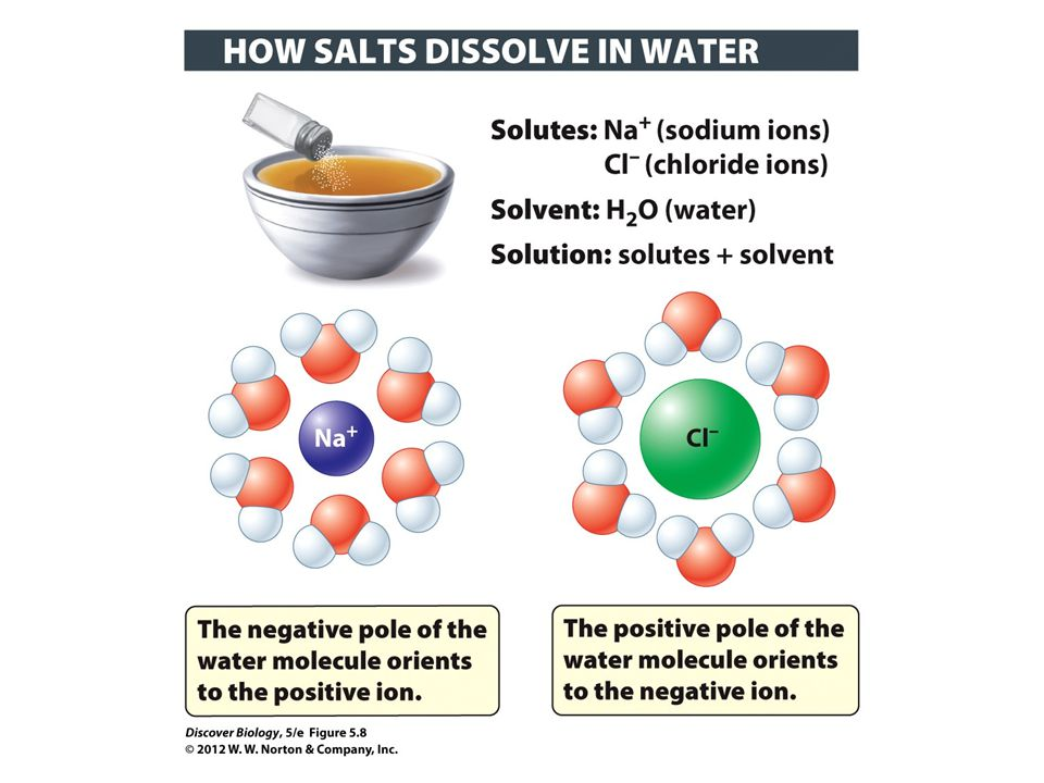 Figure 5.8 Charged Substances Dissolve in Water to Form Solutions