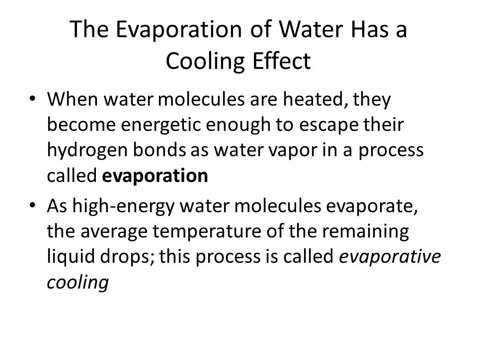 The Evaporation of Water Has a Cooling Effect