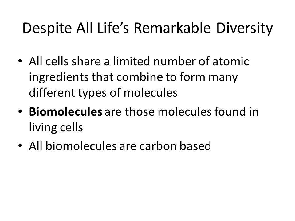 Despite All Life's Remarkable Diversity