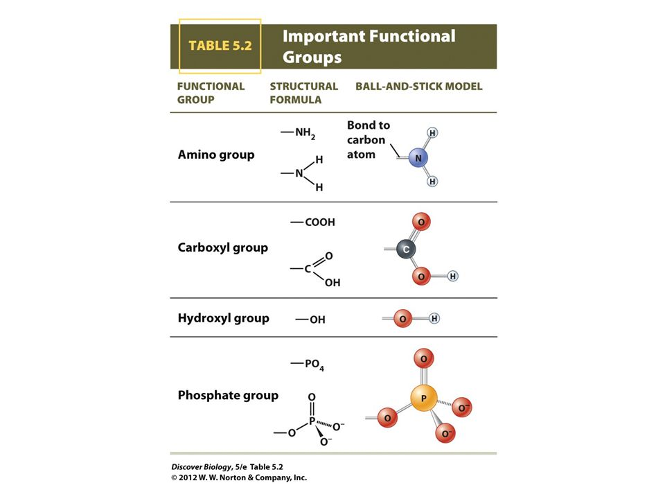 TABLE 5.2 Important Functional Groups