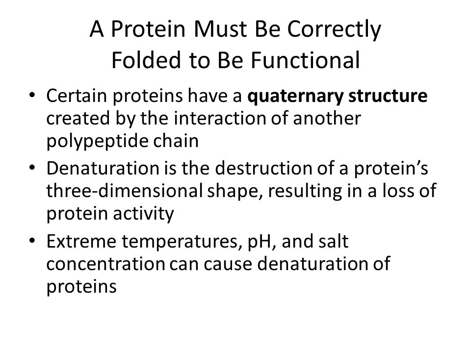 A Protein Must Be Correctly Folded to Be Functional