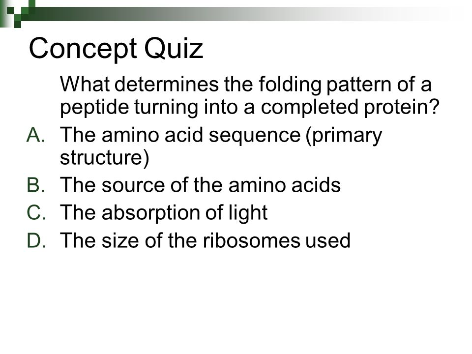 Concept Quiz What determines the folding pattern of a peptide turning into a completed protein The amino acid sequence (primary structure)