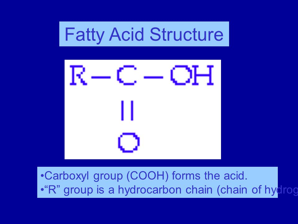 Fatty Acid Structure Carboxyl group (COOH) forms the acid.