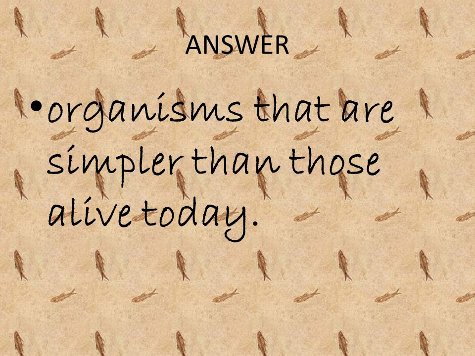 organisms that are simpler than those alive today.