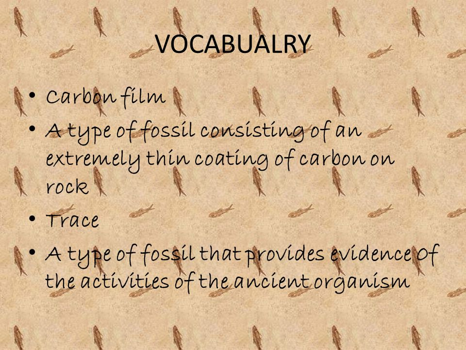 VOCABUALRY Carbon film