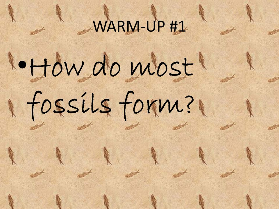 How do most fossils form