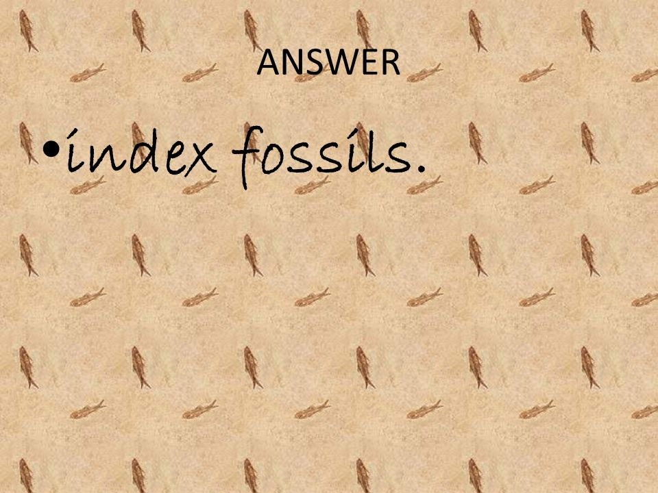 ANSWER index fossils.