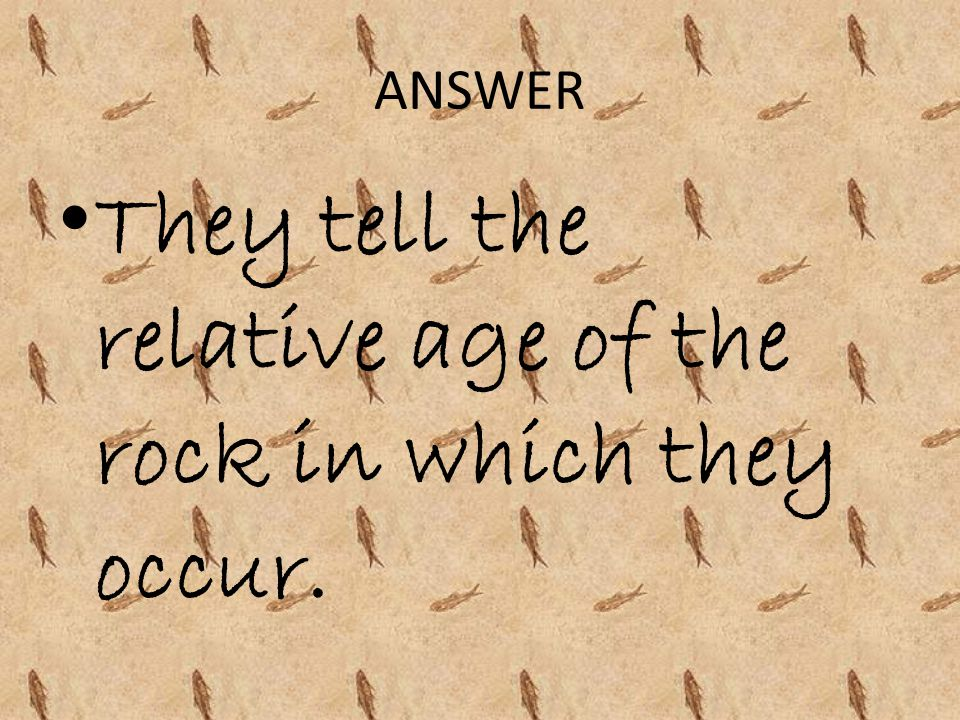 They tell the relative age of the rock in which they occur.