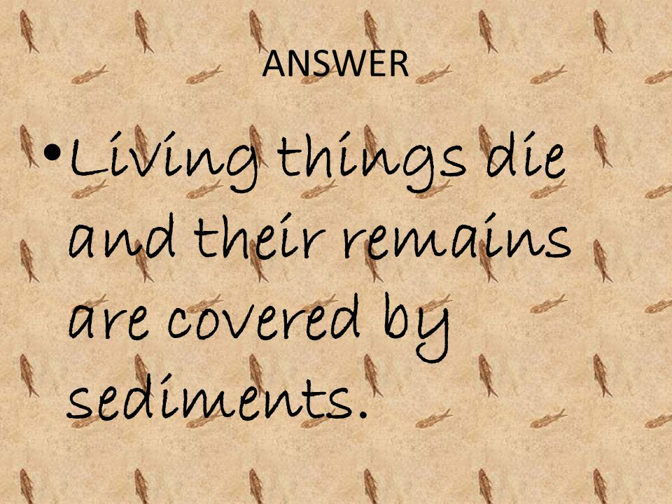 Living things die and their remains are covered by sediments.
