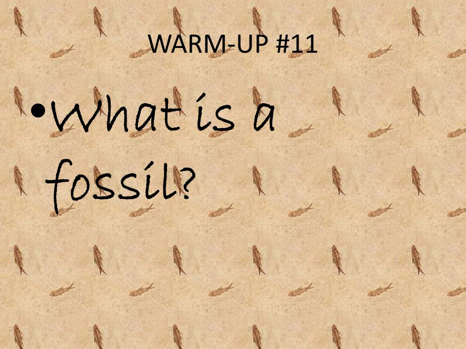 WARM-UP #11 What is a fossil