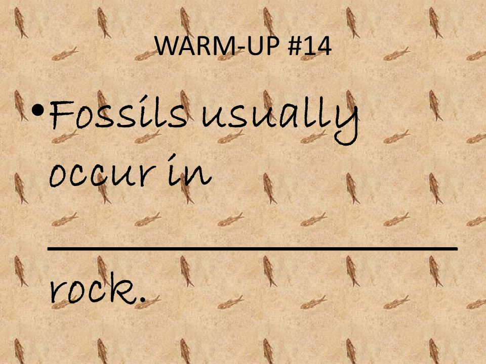 Fossils usually occur in _____________________ rock.