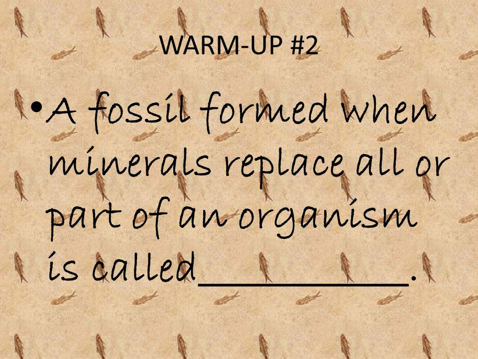 WARM-UP #2 A fossil formed when minerals replace all or part of an organism is called____________.