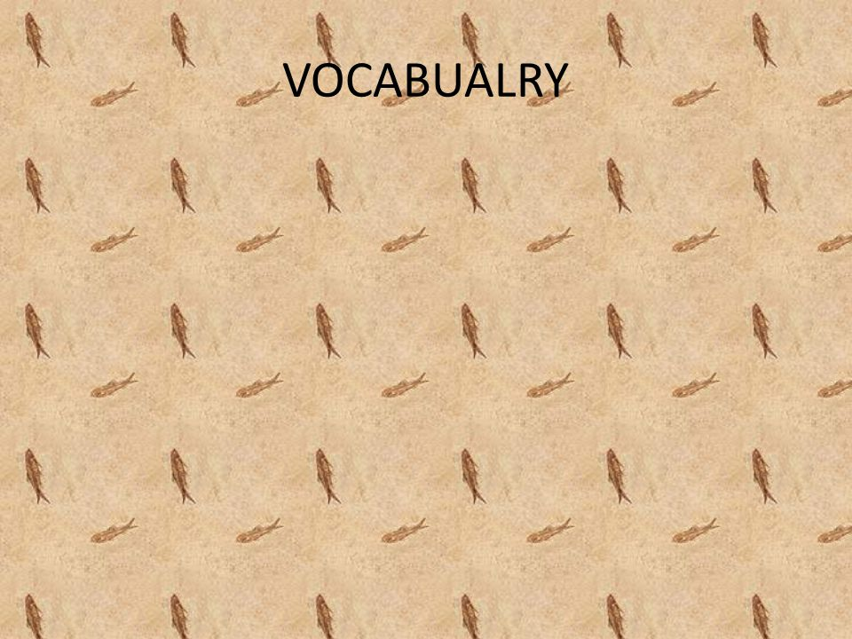 VOCABUALRY