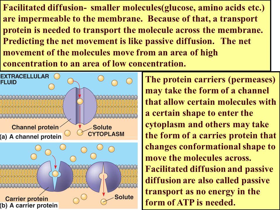 Facilitated diffusion- smaller molecules(glucose, amino acids etc