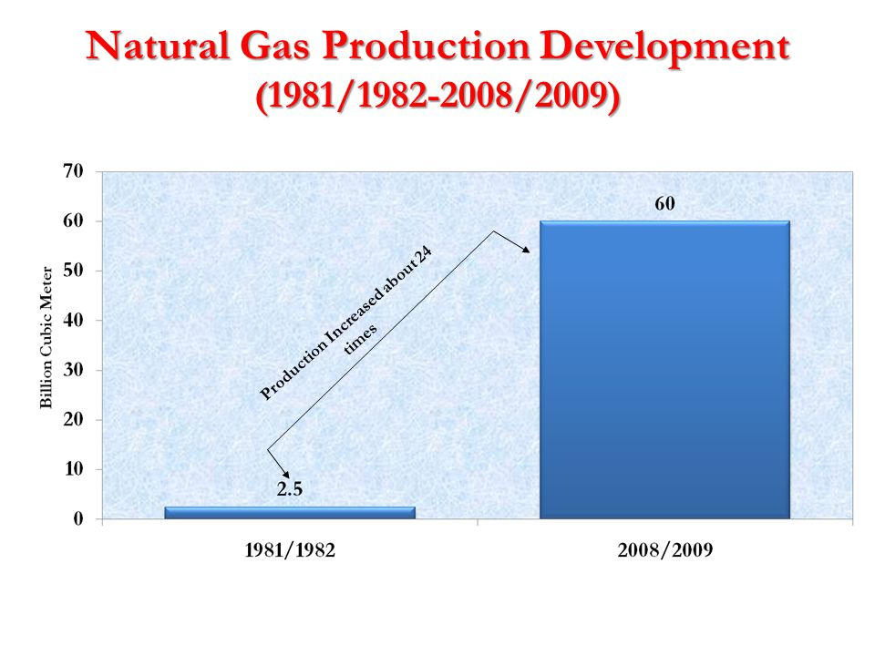 Natural Gas Production Development (1981/1982-2008/2009)