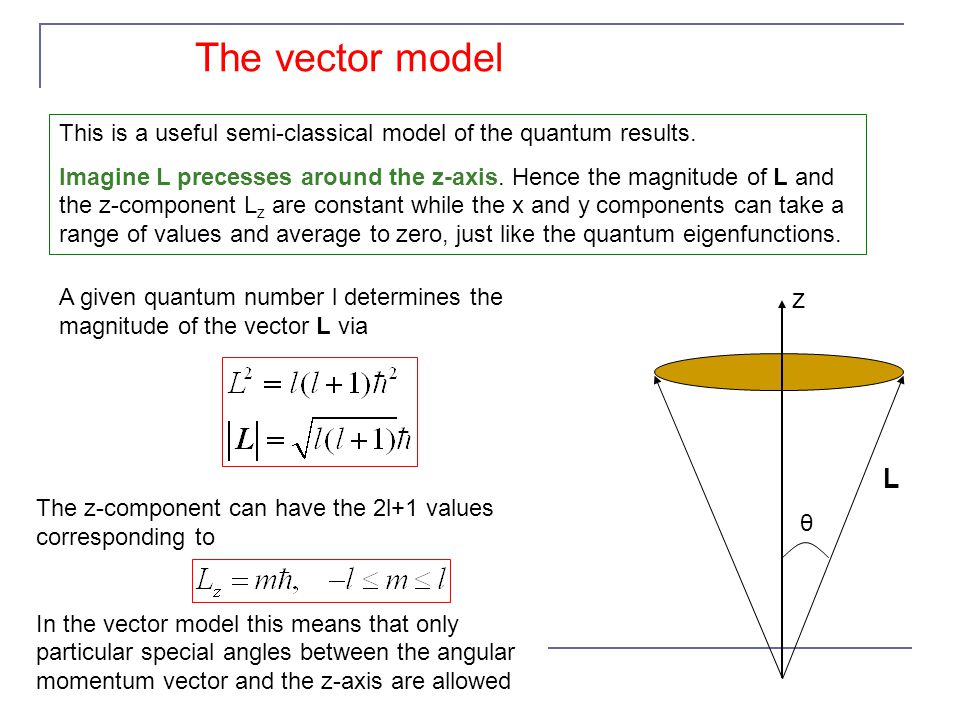 The vector model This is a useful semi-classical model of the quantum results.