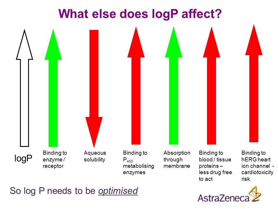 What else does logP affect