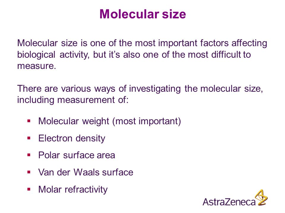 Molecular size Molecular size is one of the most important factors affecting biological activity, but it's also one of the most difficult to measure.