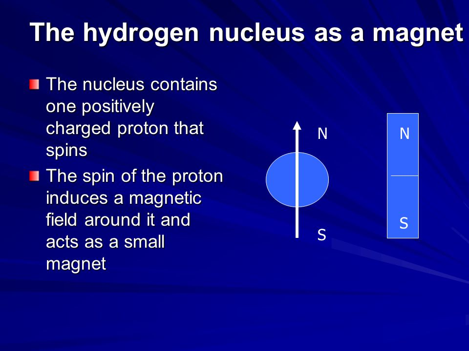The hydrogen nucleus as a magnet