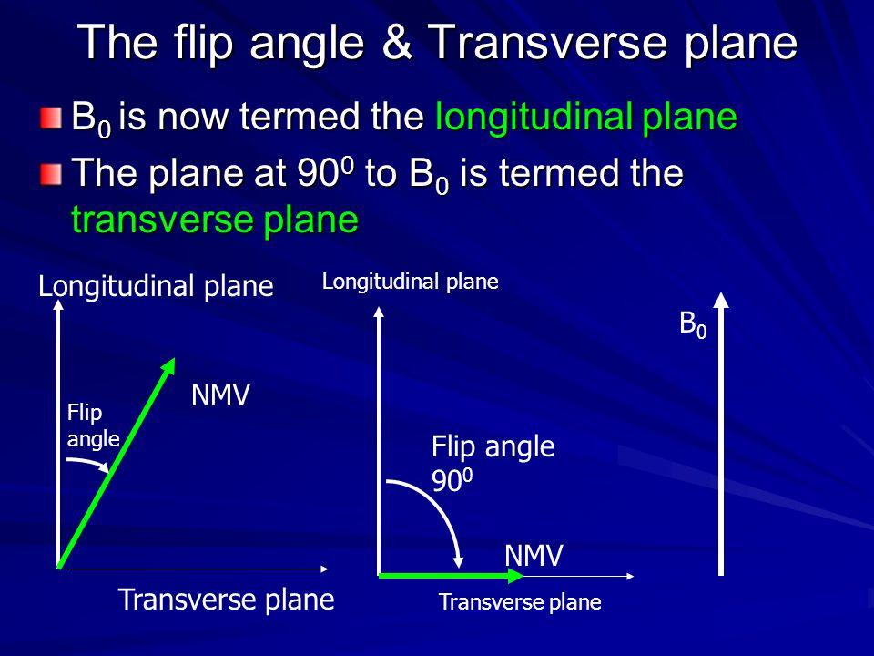 The flip angle & Transverse plane