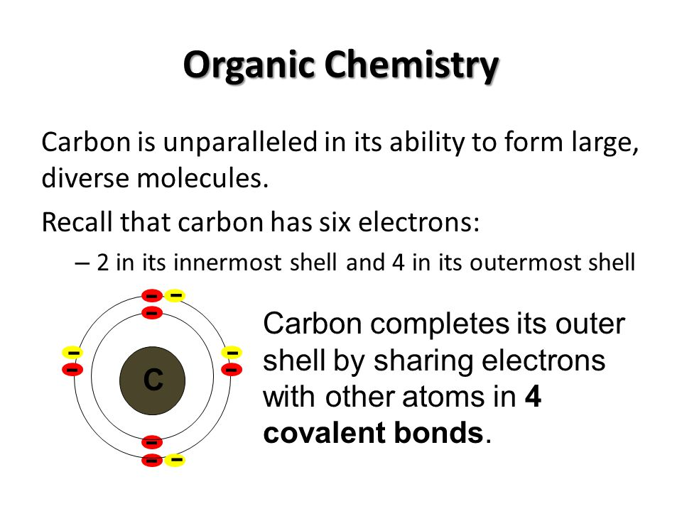Organic Chemistry Carbon is unparalleled in its ability to form large, diverse molecules. Recall that carbon has six electrons: