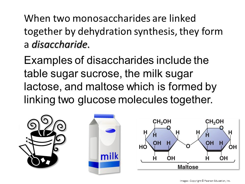 When two monosaccharides are linked together by dehydration synthesis, they form a disaccharide.