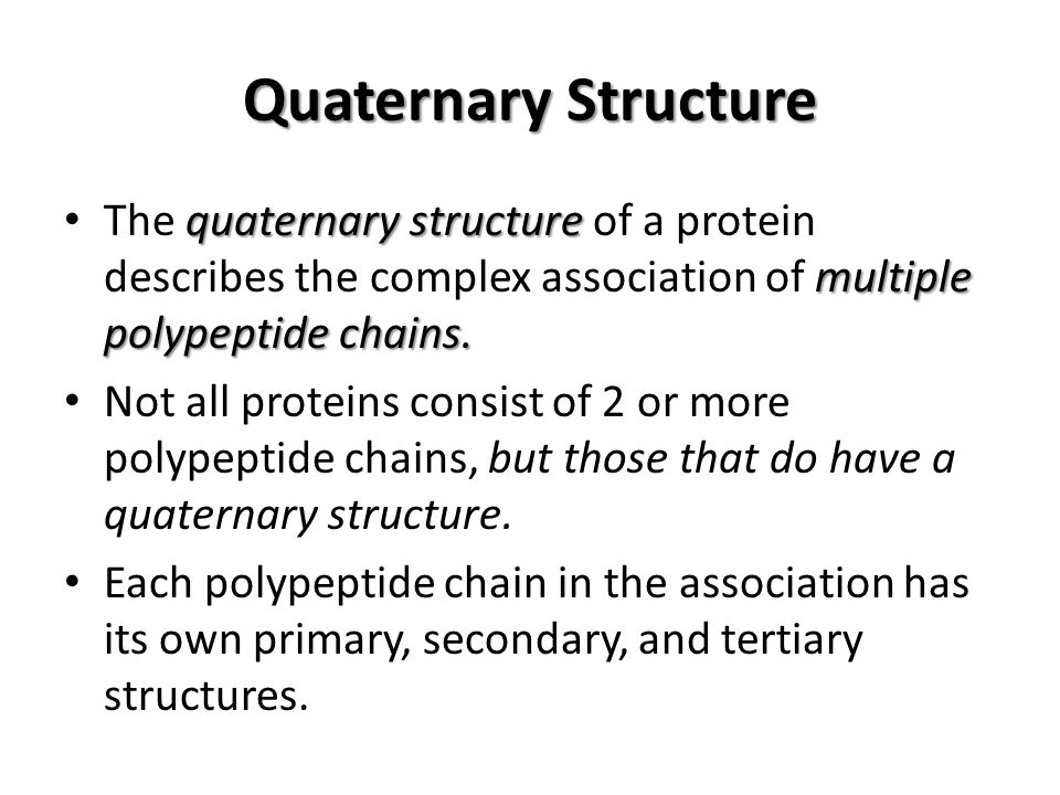 Quaternary Structure The quaternary structure of a protein describes the complex association of multiple polypeptide chains.