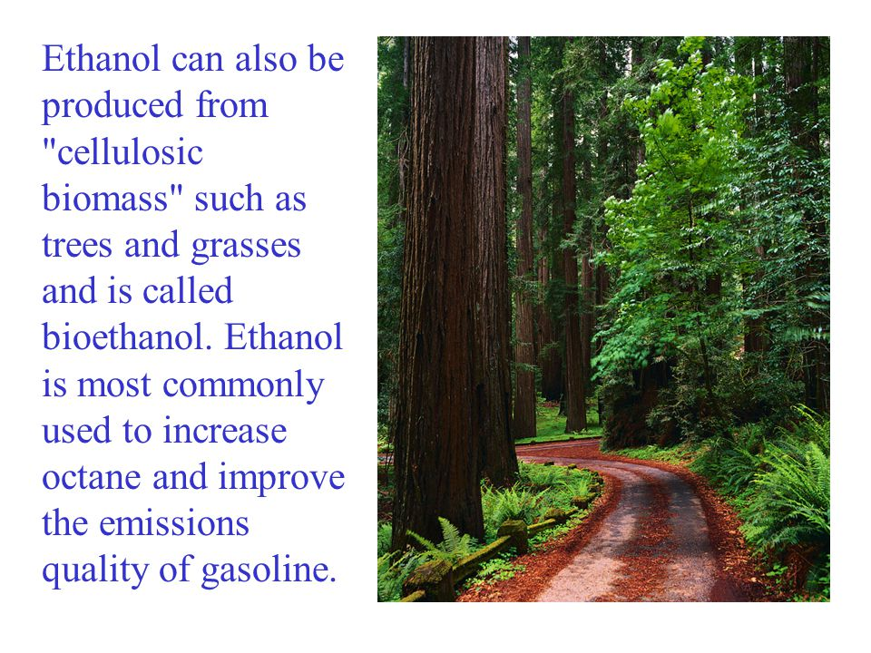 Ethanol can also be produced from cellulosic biomass such as trees and grasses and is called bioethanol.