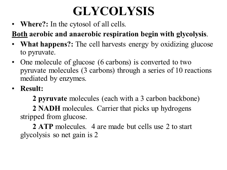 GLYCOLYSIS Where : In the cytosol of all cells.