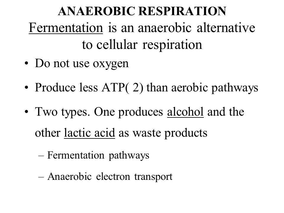 Produce less ATP( 2) than aerobic pathways